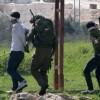الاحتلال يعتقل 3 مواطنين من مخيم جنين