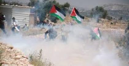إصابة رضيعة بالاختناق إثر استهداف الاحتلال منزل ذويها بقنابل الغاز شرق قلقيلية