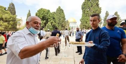 الفلسطينيين يحيون المولد النبوي بالأقصى