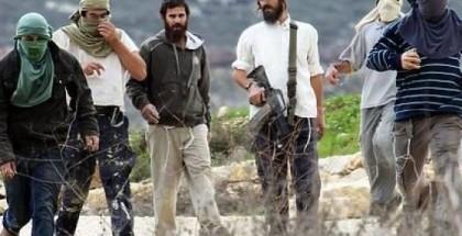 مواطنون يتصدون لهجوم مستوطنين في نابلس