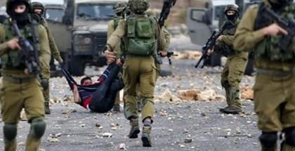 نابلس: إصابة شاب برضوض عقب اعتداء مستوطنين عليه