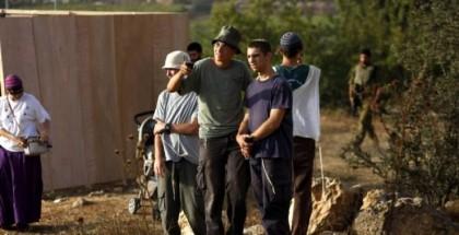 إرهابيون يعتدون على قاطفي الزيتون شمال رام الله