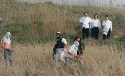 مستعربون يعتقلون 3 شبان من القدس