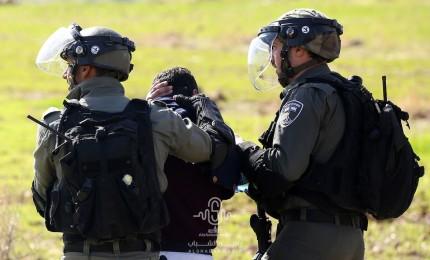 الاحتلال يعتقل الشاب جرادات قرب بلدة برطعة في جنين