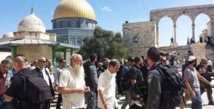 مئات المستوطنين يقتحمون باحات الأقصى المبارك