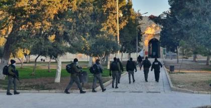 الاحتلال يقتحم باحات المسجد الأقصى