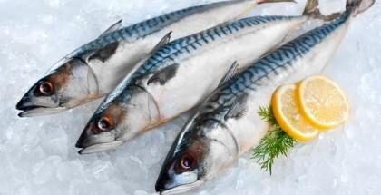 ما هي أفضل أنواع الأسماك من أجل صحة جيدة؟
