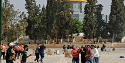 بالصور .. اقتحام قوات الاحتلال باحات الأقصى والاعتداء على المصلين