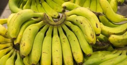 الخرطوم.. أسعار الموز تنخفض 30% لسبب غريب